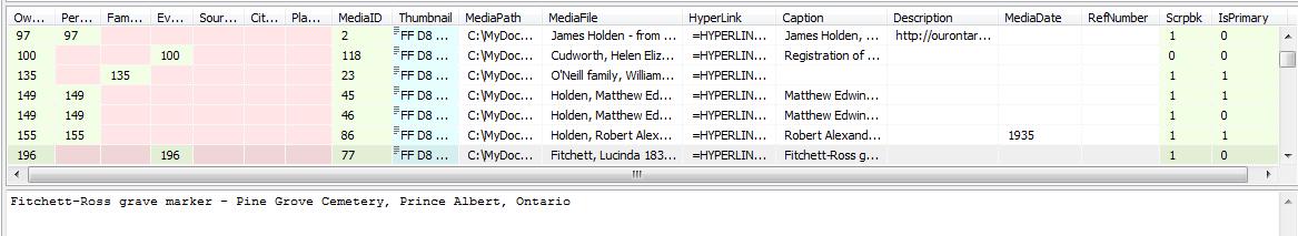 MediaList-SpyScreenshot.PNG